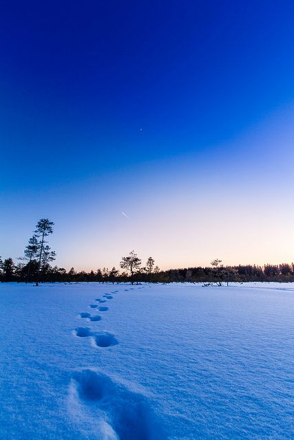 Suomi, Blue Moment by Ilari Lehtinen