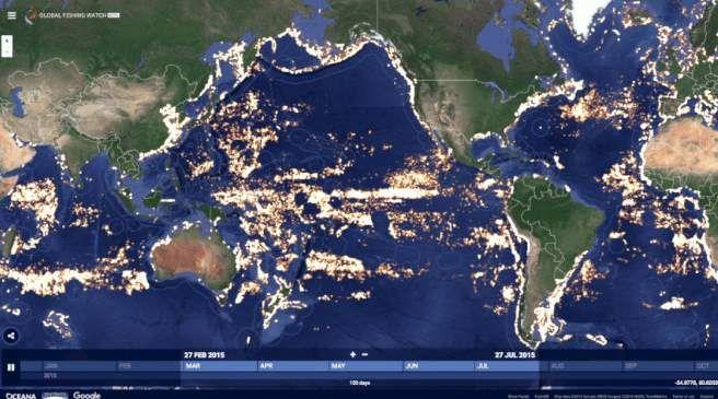 #Mejorando_el_mundo #google #pesca Google presenta proyecto para ver actividad pesquera en el mundo en tiempo real