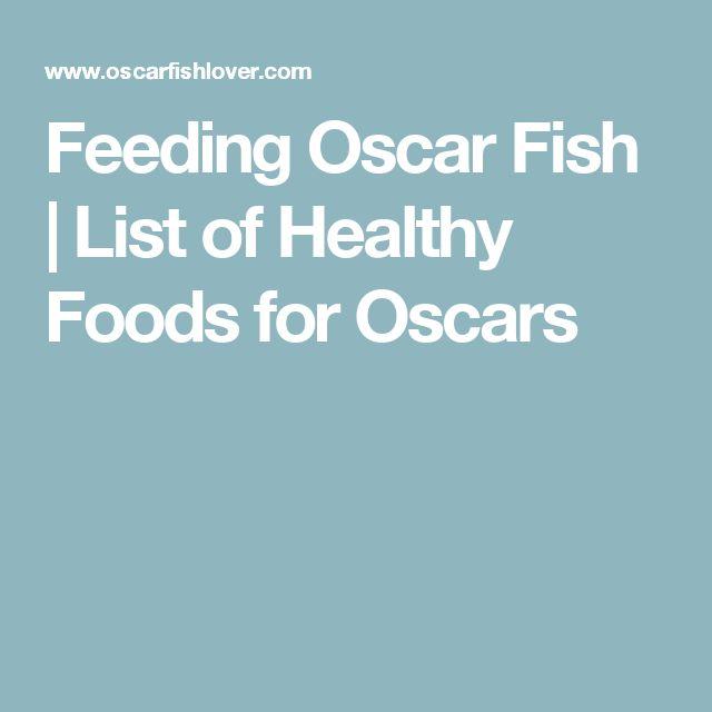Feeding Oscar Fish | List of Healthy Foods for Oscars