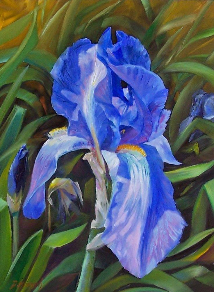 Original Oil Painting Blue Iris Flower art, Oil painting