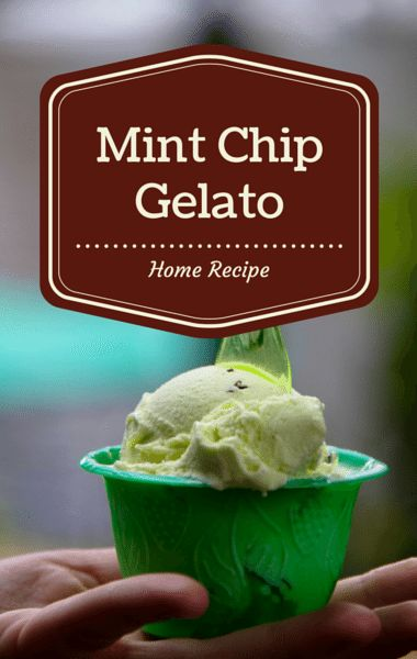 Mint-Chocolate Chip Gelato Recipe — Dishmaps