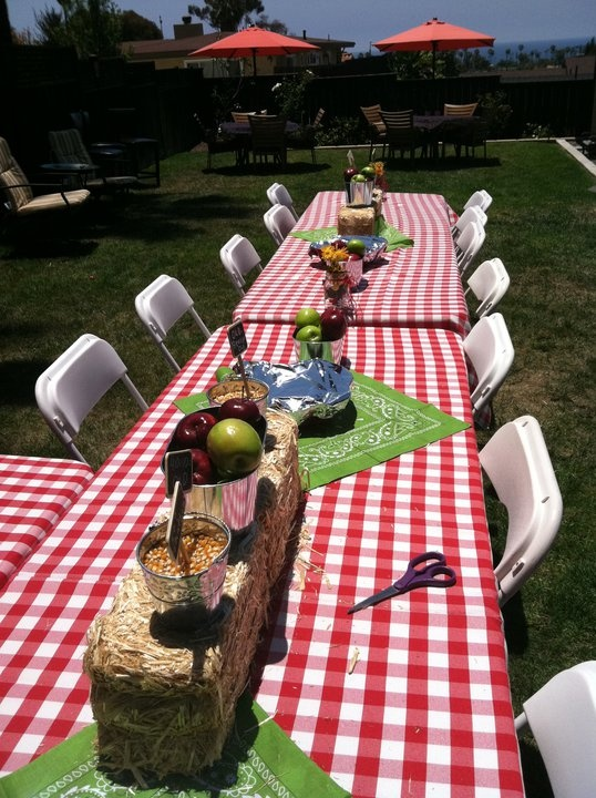 Cute Picnic Theme Center pieces (like this for a summer party at the