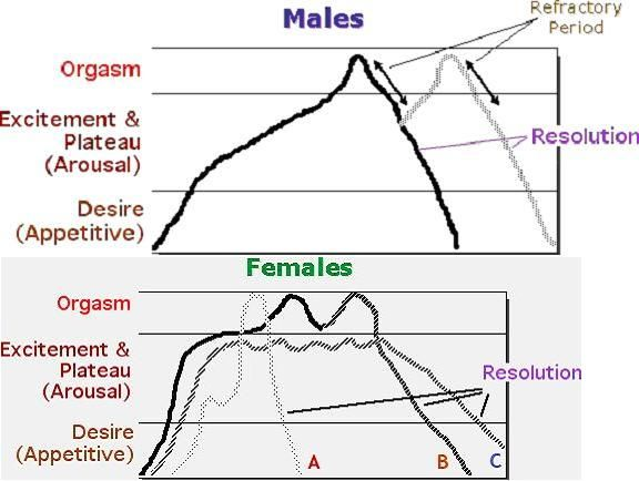 What Multiple orgasm in women graph chart are absolutely