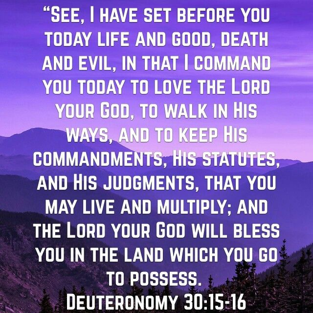 Deuteronomy 30:15-16 | Holy Spirit Breathed | Deuteronomy ...