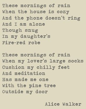 verses from alice walker's 'these mornings of rain' - perfect reading for a cosy day