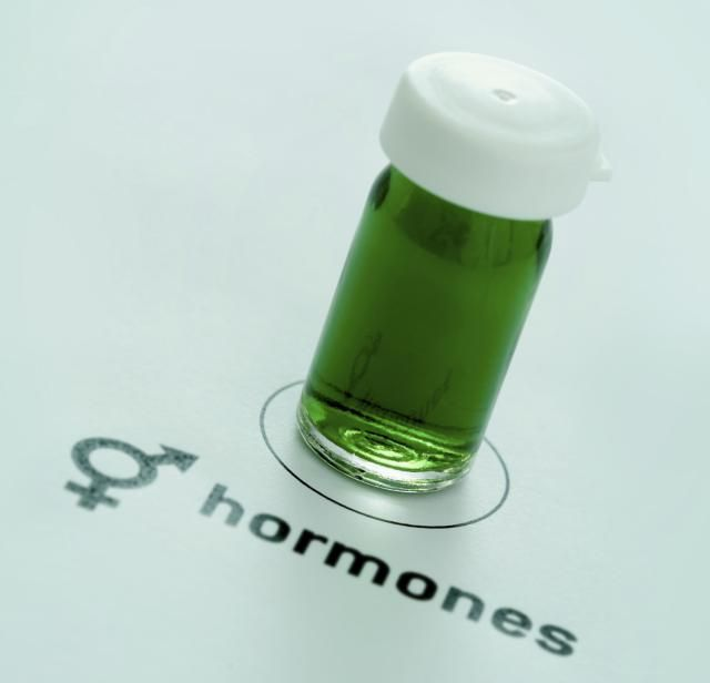 How Do Steroid Hormones Work?