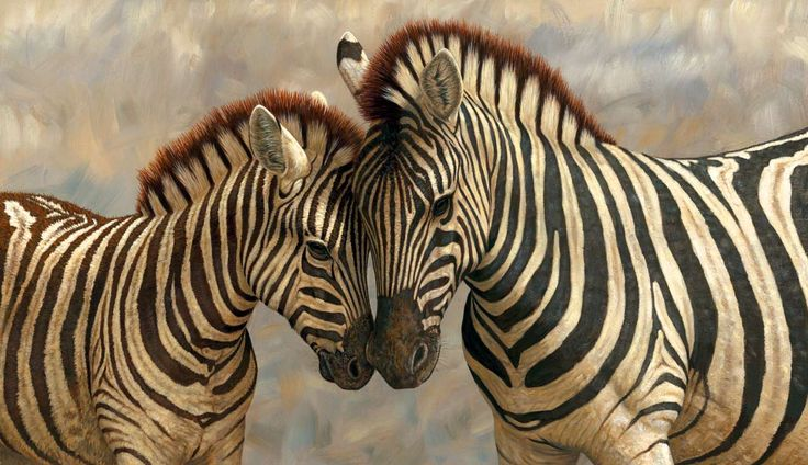 Study Explains why Zebras Have Stripes | Biology | Sci-News.com