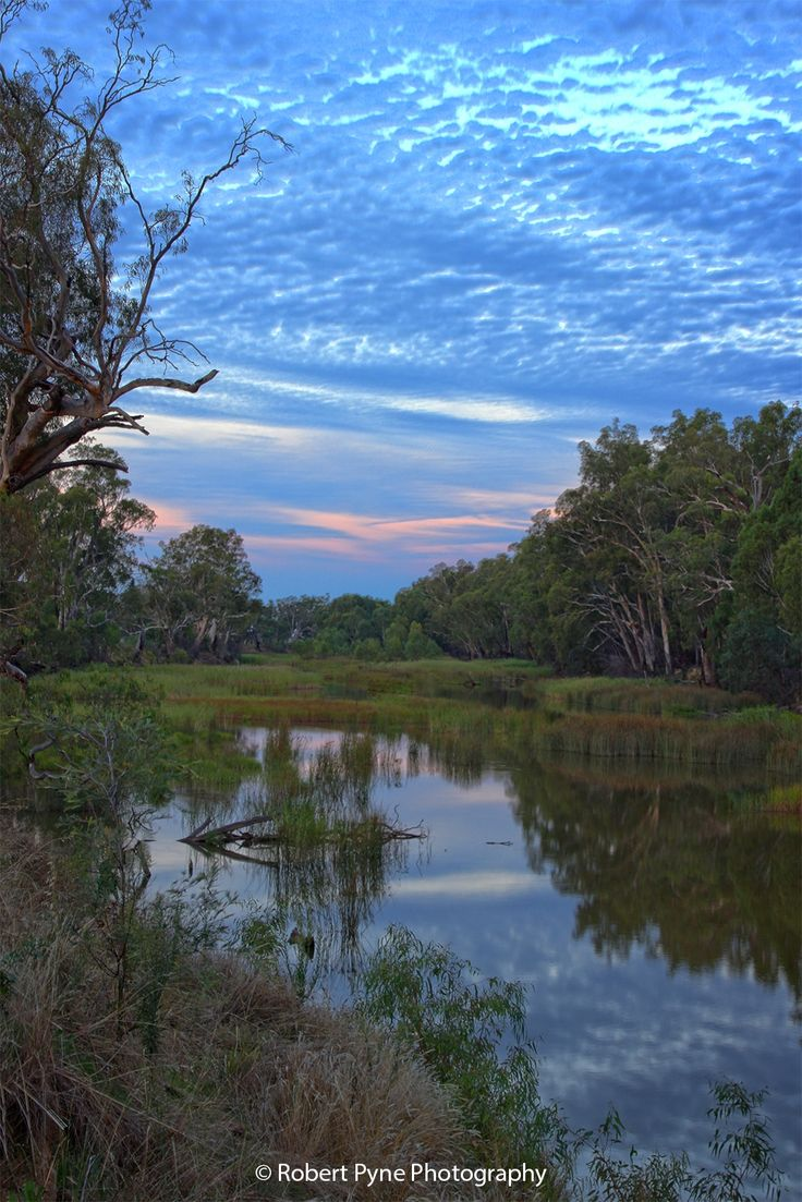 Backyard with a view.  This is a tributary off the Murray River that is at the back of the property we live on.