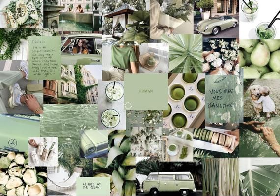 Pastel Green Aesthetic Wallpaper For Laptop Sage Wall Collage Kit Aesthetic Trendy Sage Room Decor College Dorm Wall Decor Best Value 4x6 Photos Printed And Shipped In 2021 Cute Desktop Wallpaper Aesthetic Desktop Wallpaper Cute Laptop Wallpaper sage wall collage kit aesthetic