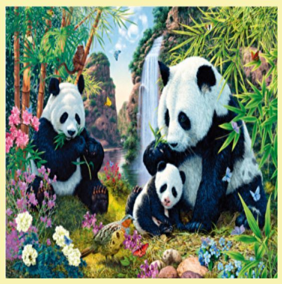 For Everything Genealogy - Panda Valley Animal Themed Maxi Wooden Jigsaw Puzzle 250 Pieces, $65.00 (http://www.foreverythinggenealogy.com.au/panda-valley-animal-themed-maxi-wooden-jigsaw-puzzle-250-pieces/)