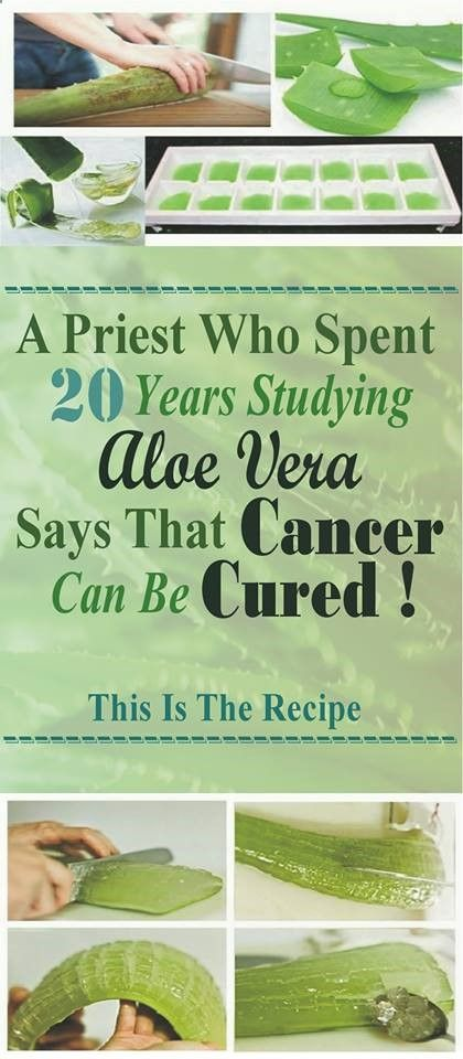 A Priest Who Spent 20 Years Studying Aloe Vera Says That Cancer Can Be Cured! This Is The Recipe! - Read & Repin Follow Us