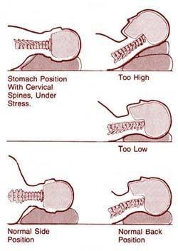 Correct Way Of Sleeping Sleep Posture Spine Health