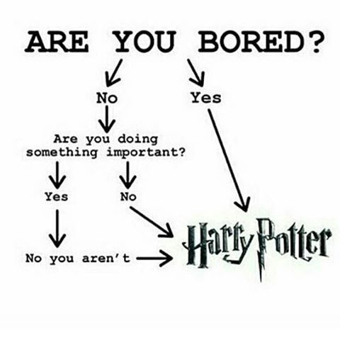 Harry potter... This is literally me right now. I should be sleeping but harry potter is more important