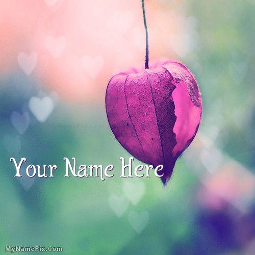 The 16 best images about cute name pictures on pinterest for Can you get purple roses