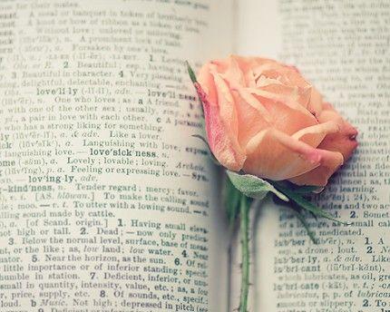 book love rose photograph / flower, text, print, love, rose, pink, peach, apricot, valentine / lovesickness / 8x10 fine art photo. $28.00, via Etsy.