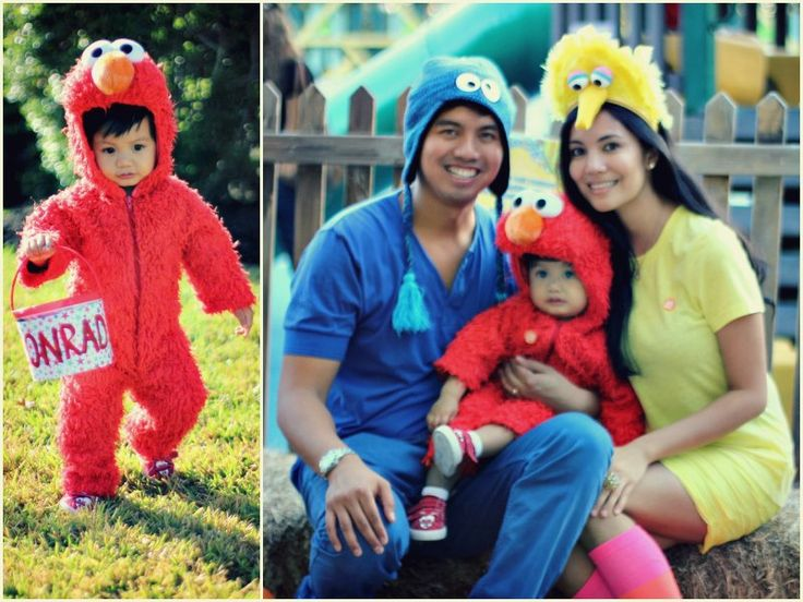 fun halloween costume idea for the family: DAD - cookie monster hat from Walmart, blue shirt, blue jeans MOM - yellow headband hat worn upside down (decorated with yellow feathers, painted round styrofoam for eyes, toilet paper roll for nose), yellow shirt, yellow skirt, pink/orange knee-high socks BABY - Elmo costume from ebay