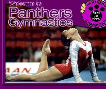 Welcome to Panthers Gymnastics