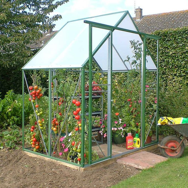 Which Greenhouse is Best, Large & Small Greenhouses For Sale, How to Get a FREE Greenhouse