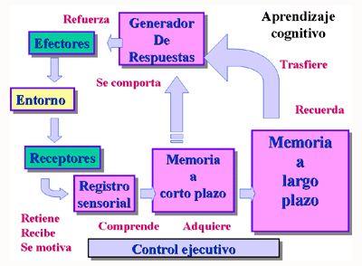 Concepción del aprendizaje y de la instrucción según J. Bruner