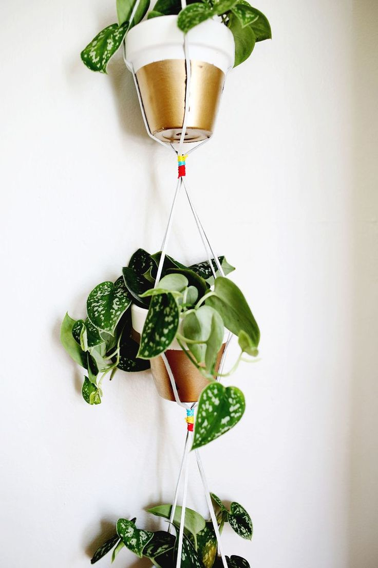 HOME | Gold Dipped Hanging Planters
