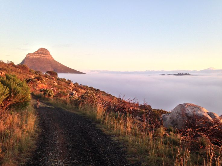Thick miss no Cape Town only a small bit of signal hill is visible