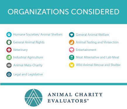 Las 25+ mejores ideas sobre Charity evaluation en Pinterest - project evaluation