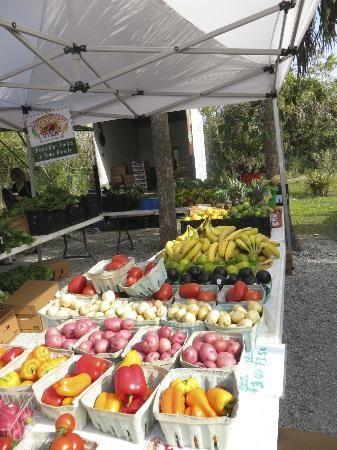 Sanibel Island Farmer's Market: Fruit...ripe, sweet, and fresh. http://www.youtube.com/watch?v=lIgqFPwp0s4&app=desktop