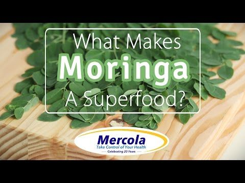 What Makes Moringa A Superfood?