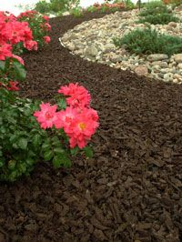 brown rubber mulch - diggin this new mulch, but worried it will smell like a tire factory when you walk up...lol!