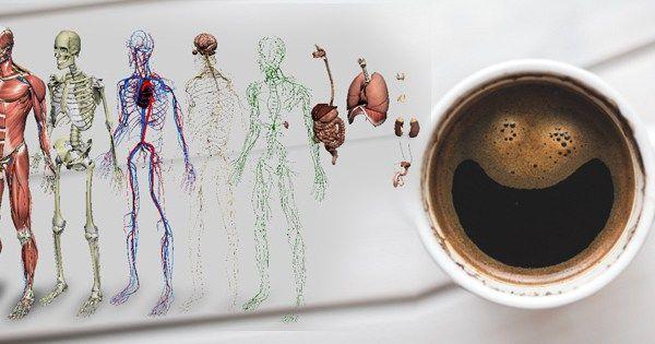 kawa ciało