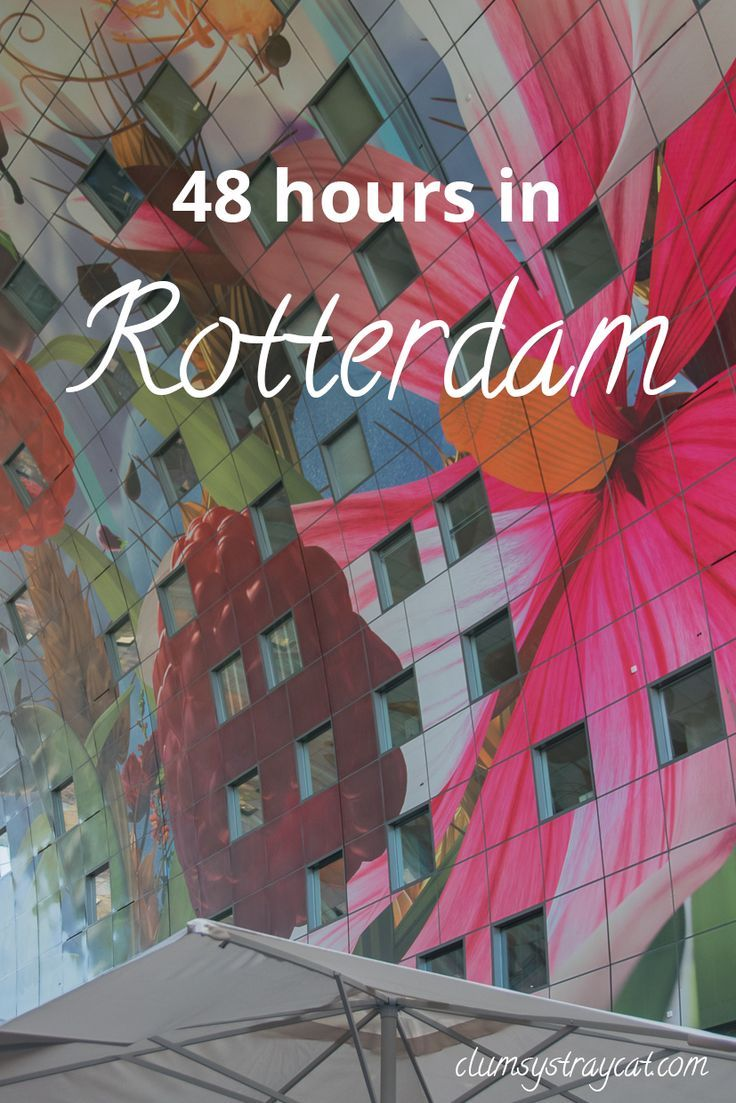 I spent 48 hours in Rotterdam and absolutely loved! Click to discover what exactly it was that made me adore this Dutch port city. Hint: among other things, it might have something to do with the amazing food I ate there.