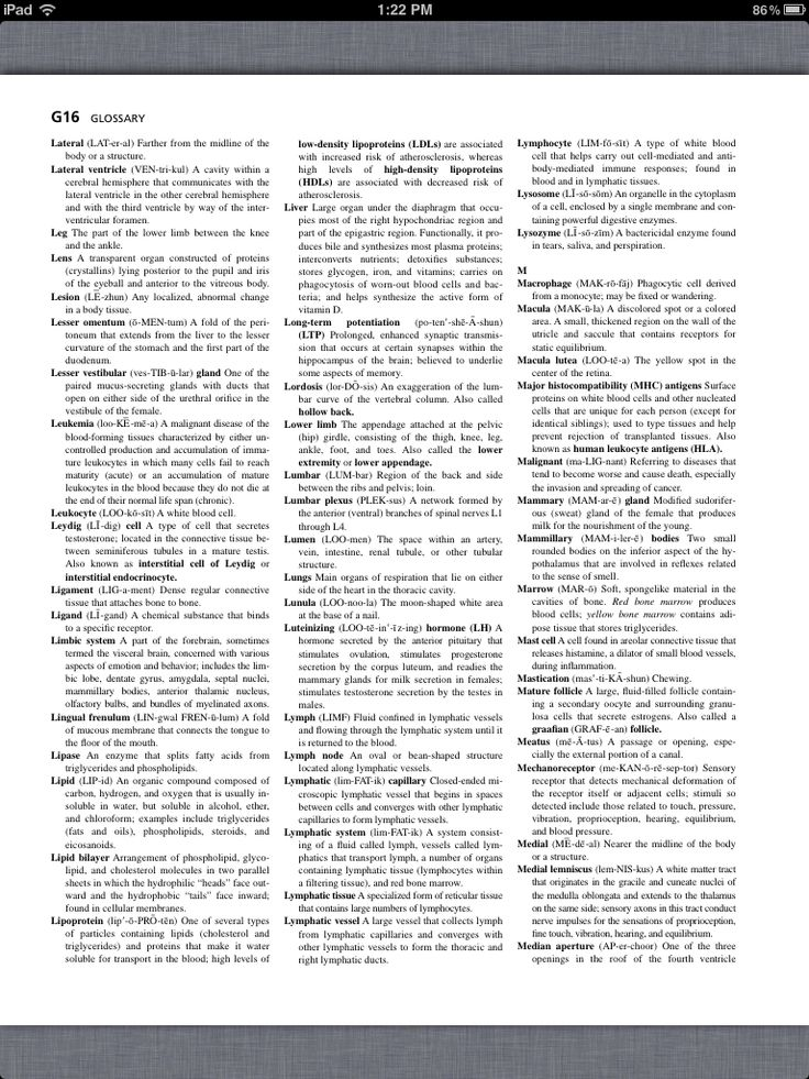 Principles of Anatomy and Physiology, Glossary 4 | Chapter 1-29 ...