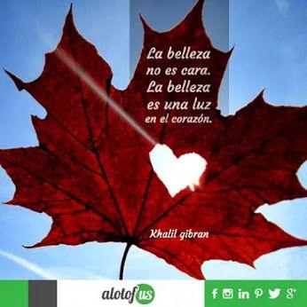 La belleza no es cara. La belleza es una luz en el corazón. Khalil Gibran #frases #quotes