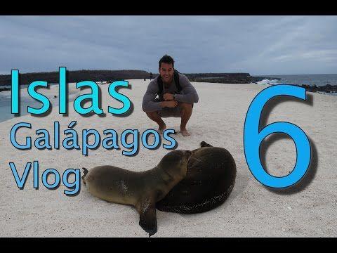 Islas Galápagos Vlog 6 | Leones Marinos en Islote Mosquera y Sombrero Chino - http://www.nopasc.org/islas-galapagos-vlog-6-leones-marinos-en-islote-mosquera-y-sombrero-chino/