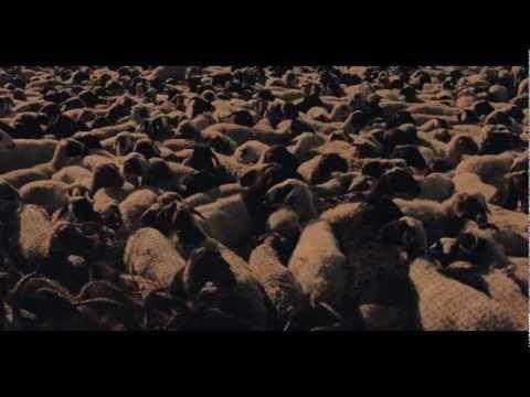 97% Owned - Economic Truth documentary - Queuepolitely cut