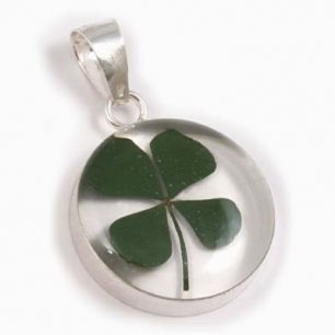 This time of year four-leaf clovers and shamrocks pop up all over the place... learn the difference, and discover why we wear green on St Patrick's Day here...