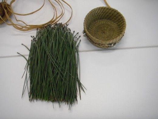 Long needles from Ponderosa, Red, California Redwood or Pinon Pines are the best for weaving pine needle baskets.