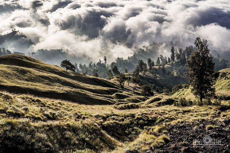 Three days Rinjani trekking -That day we had to get to the crater - or rather its ridge (Plawangan Senaru). Just below it was the first overnight.