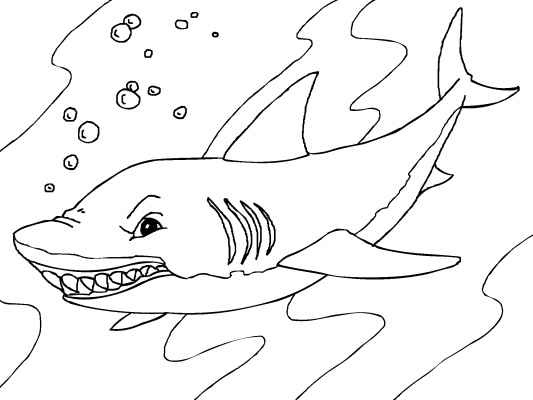 10 best Free Sea Animals Coloring Pages images on