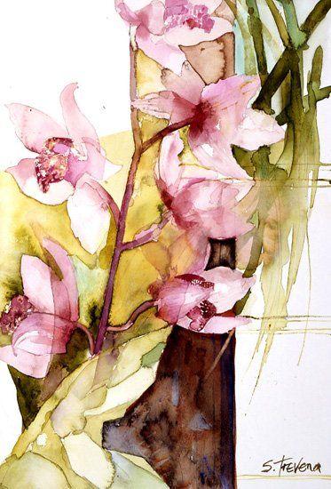 Shirley Trevena /   Spray of Orchids (1994)