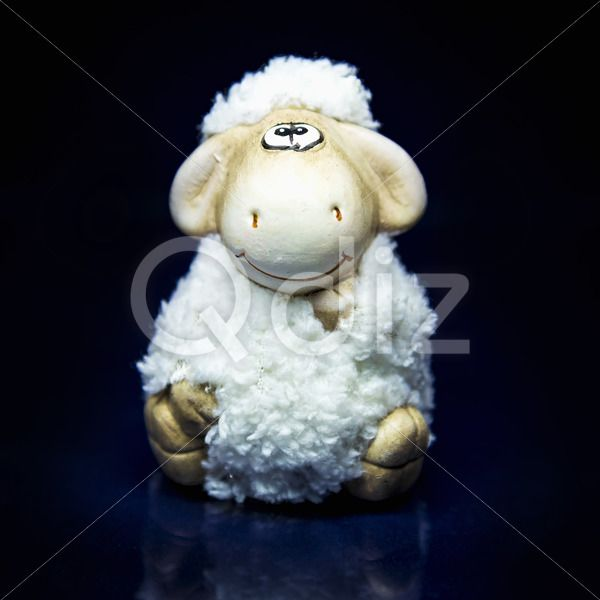 Qdiz Stock Photos | Sheep the symbol 2015 year,  #2015 #asia #background #black #blue #celebrate #celebration #character #china #chinese #closeup #concept #culture #decoration #doll #east #ewe #festival #festive #figure #fun #funny #greeting #holiday #japanese #jumbuck #lamb #little #mutton #new #religion #sheep #small #symbol #toy #tradition #traditional #white #year #zodiac