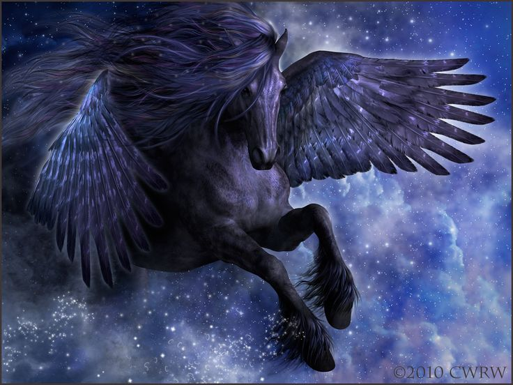 1000+ images about Ancient Animals on Pinterest | Pegasus ...