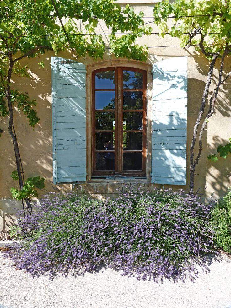 Villa St-Saturnin è un'elegante e spaziosa casa vacanza situata nel cuore del Parco Nazionale del Luberon, in Provenza, a soli quarantacinque minuti da Avignone e a un'ora dalla storica Aix-en-Provence Alberi da frutto, rose, lavanda, rosmarino e altre tipiche piante provenzali popolano i
