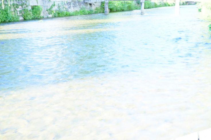 京都白川沿い
