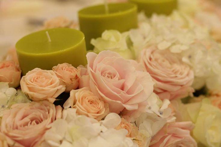 aranjamente hortensii, aranjamente florale hortensii, hortensii in luna noiembrie