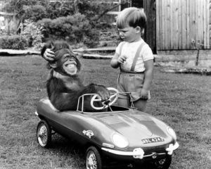 Chimp and boy with a toy car Art Print by John Drysdale
