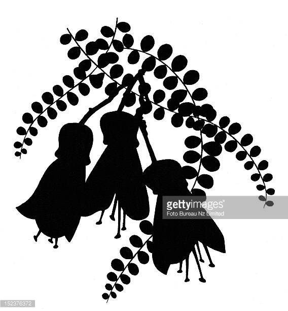 Image result for nz silhouette illustrations