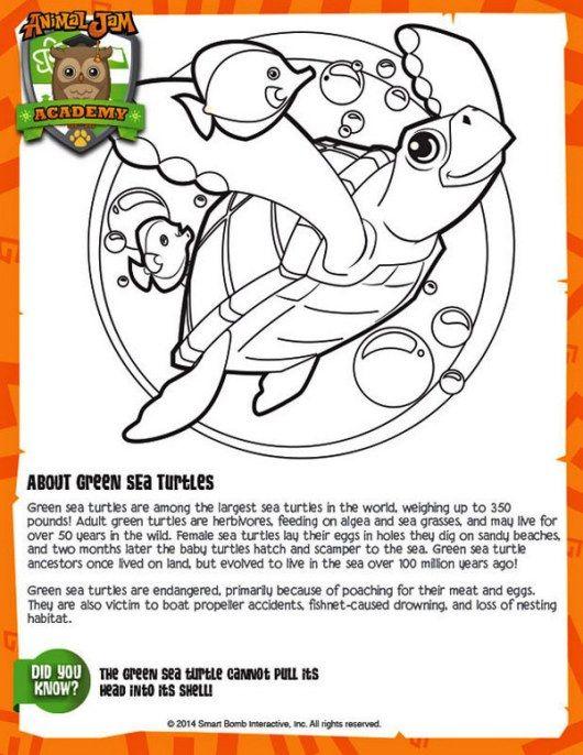 Mejores 9 imágenes de Animal Jam coloring and activity pages en ...
