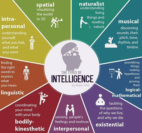 "Types of Intelligence. Like I say, ""Different people have different kinds of smart!"""