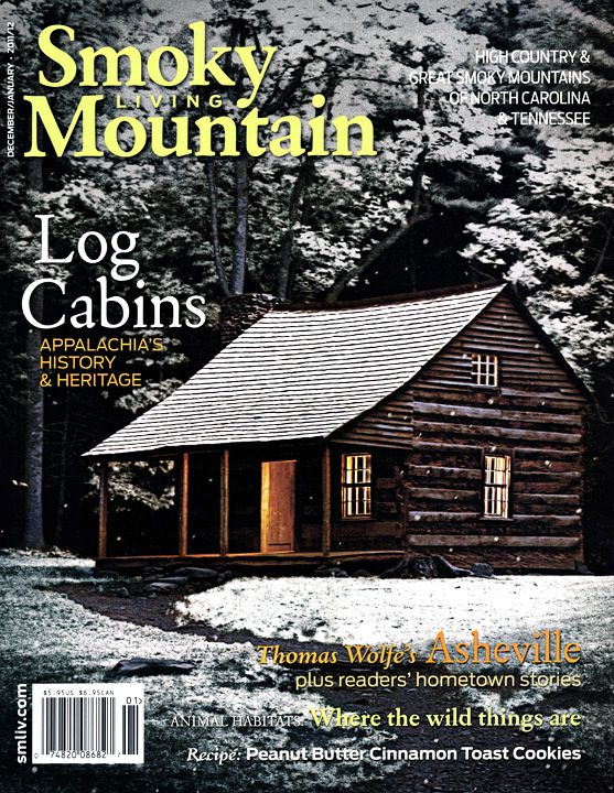 18 best tennessee images on pinterest beautiful places for Cabins near mount magazine